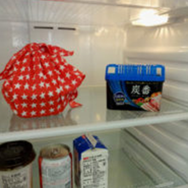 【控价】KOKUBO日本冰箱用脱臭剂大号300g