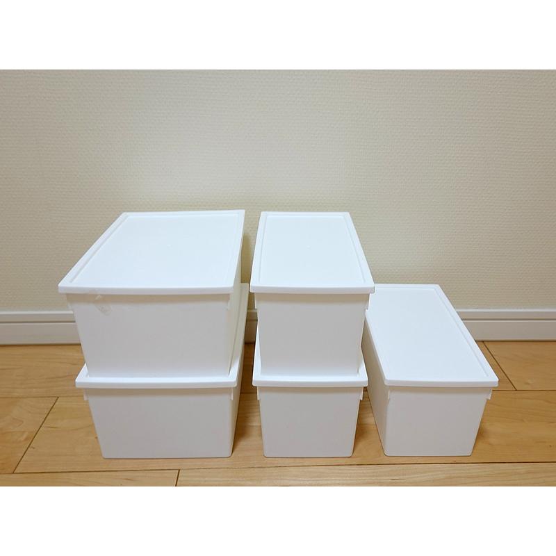 HIMARAYA日本白色带盖多功能收纳盒 窄长LL